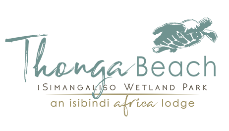 ISIBINDI_Thonga-Beach-new